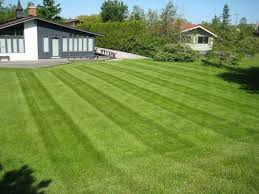 Commercial Grass Cutting Company Ridgecrest LA